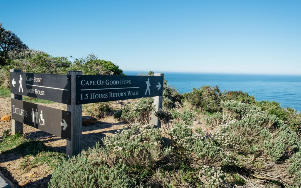 Cape Of Good Hope Tour | Cape of Good Hope Private Tours | Cape Point Explorer Day Tour