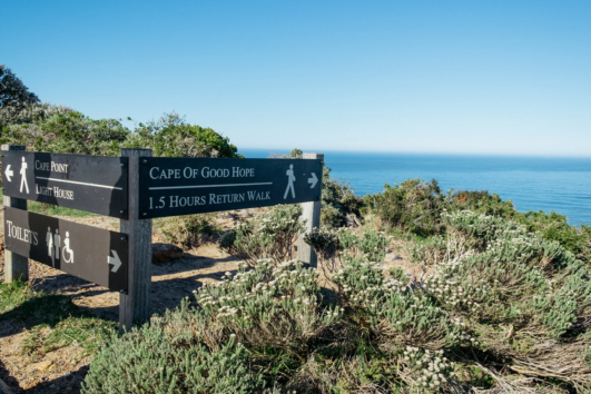 Cape Point Explorer Day Tour